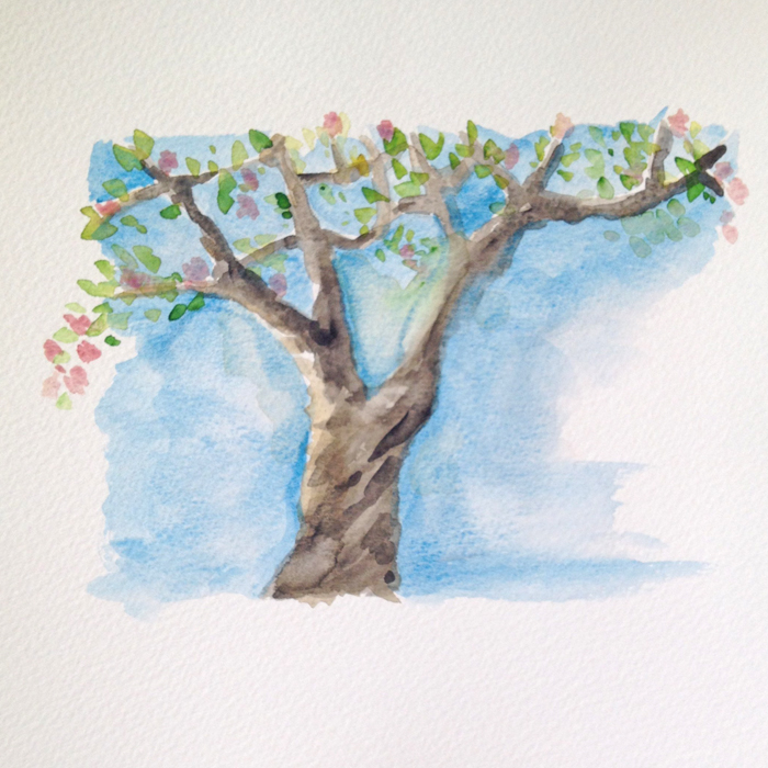 Mellanrumsmålning och form - äppleträd i akvarell. Akvarellkurs hos Anita Tingskull