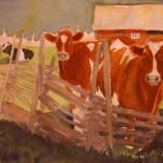 Småländska kor